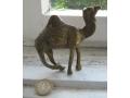 Месингова камила